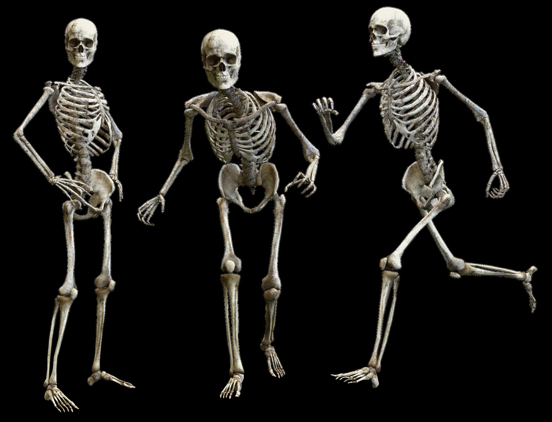 התעמלות בונה עצם – למה זה כדאי?